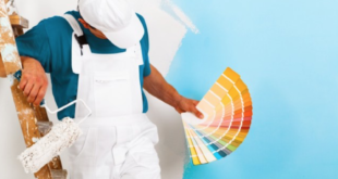 What Tools You Need to Paint Your Home
